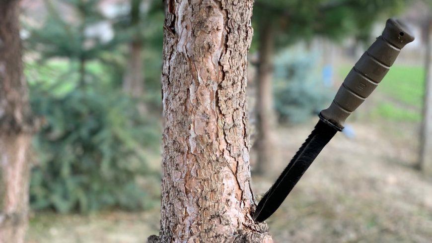 5 (+1) rád ako vybrať správny nôž